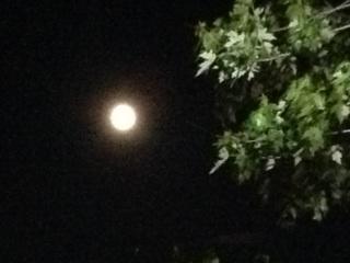 Super Nan in the moon